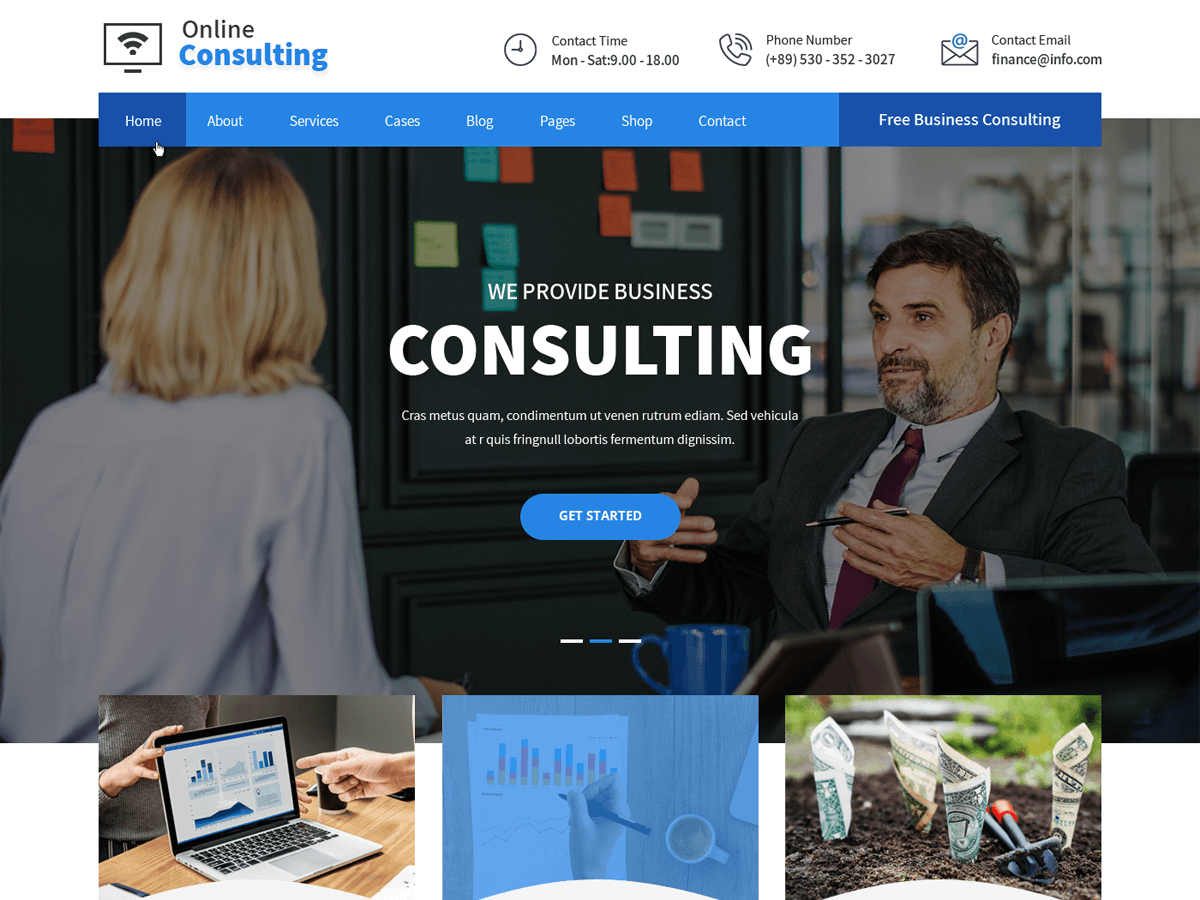online consulting pro
